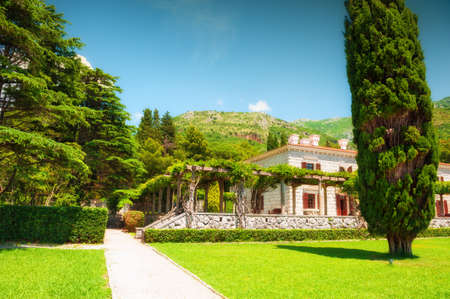 Beautiful garden with green decorative plants and trees. Summer landscape, view of the mountains and sky. Montenegro