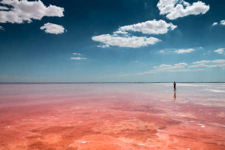 Pink salt lake and the blue sky with clouds. Sasyk-Sivash lake in Crimea. Summer landscape. Famous travel destination