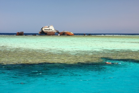 Shipwreck, Red Sea photo