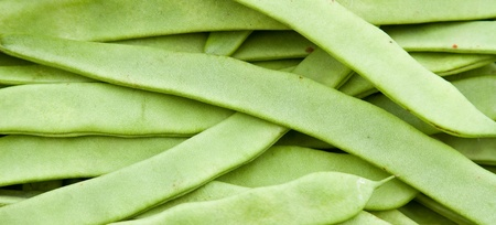 Green beans Stock Photo - 13291360