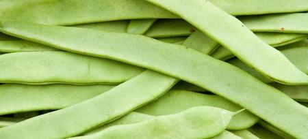 Green beans Stock Photo - 13291360