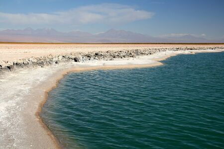 salt marsh: Salar of Atacama, Chile Stock Photo