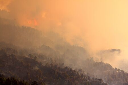 pyromaniac: Fire in La Palma, Spain