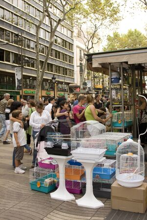 BARCELONA - SEPTEMBER 25: One of the last bird shop in Las Ramblas after the prohibition. All of them must be closed before end 2010. September 25, 2010 in Barcelona, Spain Stock Photo - 14817382