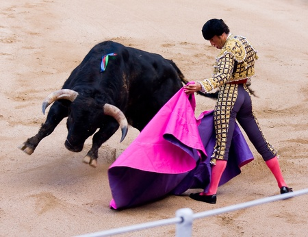 torero: BARCELONA - JUNE 6: Finito de Cordoba in action during a bullfight, typical Spanish tradition where a bullfighter kills a bull, on June 6, 2010 in Barcelona, Spain