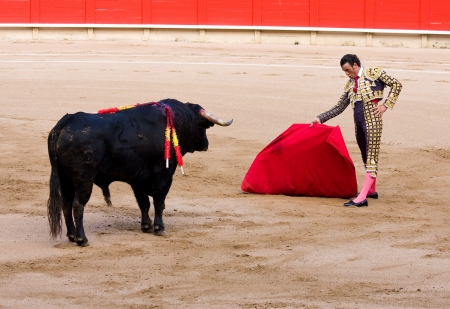 BARCELONA - JUNE 6: Finito de Cordoba in action during a bullfight, typical Spanish tradition where a bullfighter kills a bull, on June 6, 2010 in Barcelona, Spain
