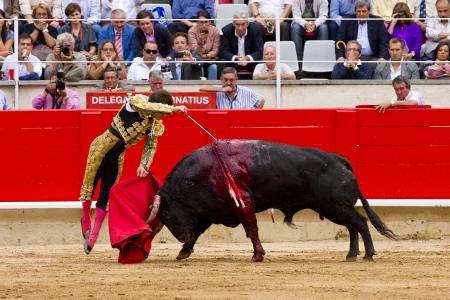 torero: BARCELONA - SEPTEMBER 24: The famous torero Julian Lopez El Juli kills a bull at the last bullfight in Catalonia before the government prohibition, on September 24, 2011 in Barcelona, Spain