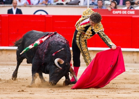 torero: BARCELONA - SEPTEMBER 24: The famous torero Jose Tomas in action at the last bullfight in Catalonia before the government prohibition, on September 24, 2011 in Barcelona, Spain Editorial