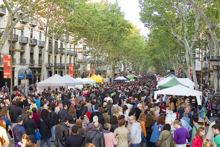 famous women: People in La Rambla during Diada de Sant Jordi or Saint George Day,  a famous Catalan celebration, on April 23, 2013, in Barcelona, Spain. Traditionally, men gave women roses, and women gave men a book