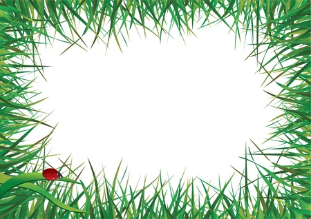 Ladybugs walking on the green grass against the sky Stock Vector - 9660413