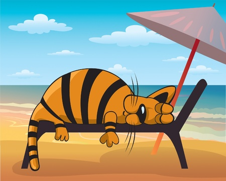Cartoon fanny cat sleeping  on a beach Vector