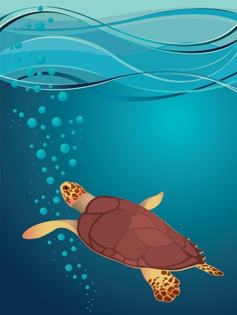 Big turtle in sea Stock Vector - 9721809