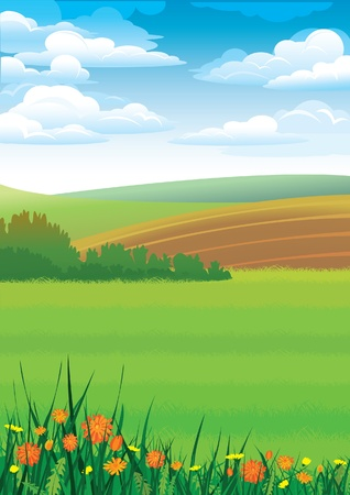 cloudy day: Summer rural landscape with red flowers  Illustration