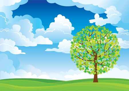 over the hill: Green tree in a meadow on the blue sky and white clouds