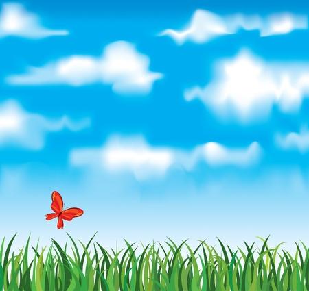 Vector de hierba verde con la mariposa de color rojo sobre un fondo blanco nubes y el fondo dlue bky