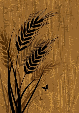 corn fields: Vector black sihouette of rye with glass on a abstract brown background Illustration
