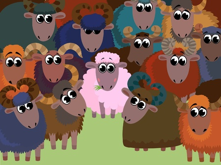 intrigue: Funny cartoon with one pink pretty sheep and group colored rams