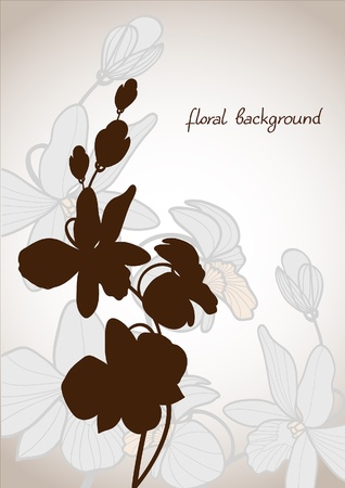 Summer vector with bloom orchid on a beige background Vector