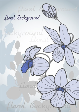 Summer vector with bloom orchid on a blue background Vector