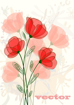 Red beautyful poppy  Vector