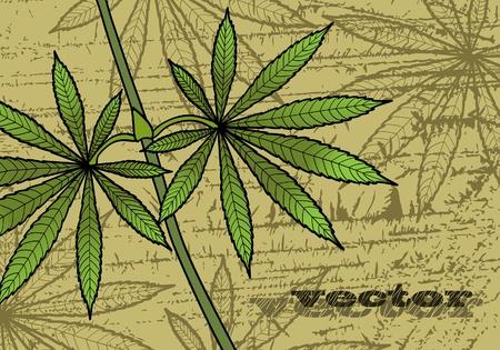 marihuana: Groene leavs van cannabis op een abstracte achtergrond Stock Illustratie