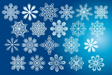 Vector collection of snowflakes Vector