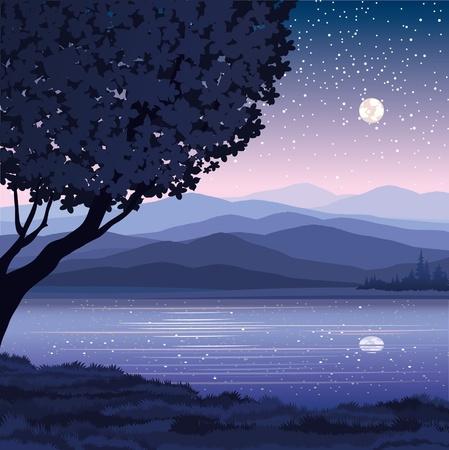 Vector paisaje nocturno con las monta�as, el lago y el �rbol sobre un fondo estrellado del cielo Vectores