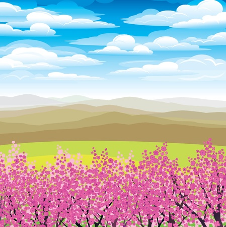 Landscape with pink japanese trees and mountains on a blue cloudy sky Vector