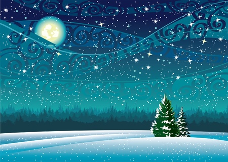 Vector wintry landscape with night sky and light moon Vector
