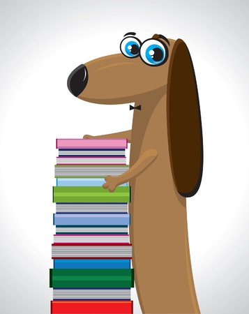 Cartoon funny dachshund with colored books on a gray background