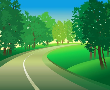 Summer green landscape with road and trees Vector