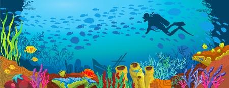 corales marinos: Arrecifes de coral con peces de colores y la silueta de buzo en el fondo azul del mar