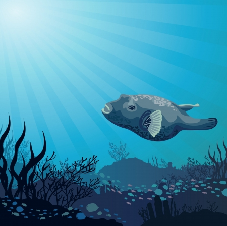 Big fish and corals on a blue sea background Vector