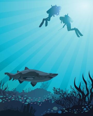 Dos buzos en busca de la gran tibur�n y el arrecife de coral en el fondo del mar azul Vectores