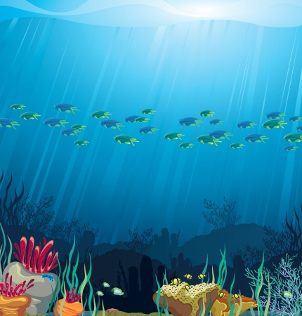 colorful fish: Underwater life - Coral reef with fish on a blue sea background