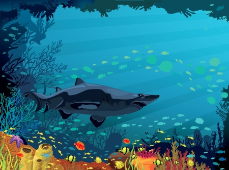 Colored coral reef with shark and silhouette of fish on blue sea background Vector