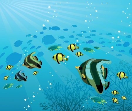 ocean background: Underwater life - Group of colored fish on a blue sea background