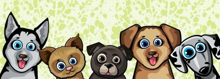 pekingese: Set of funny cartoon dogs - husky, shihpoos, dalmatian, pekingese on a green background