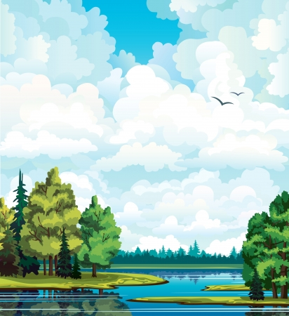 background sky: Summer green landscape with trees near the lake, forest and group of white cumulus clouds on a blue sky