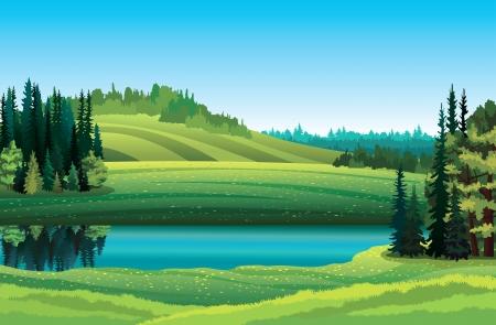 Vector paisaje de verano con hierba verde, bosque, lago y la colina sobre un fondo de cielo azul