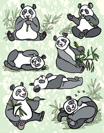 set of cartoon funny panda with bamboo leaves on a green background  Vector