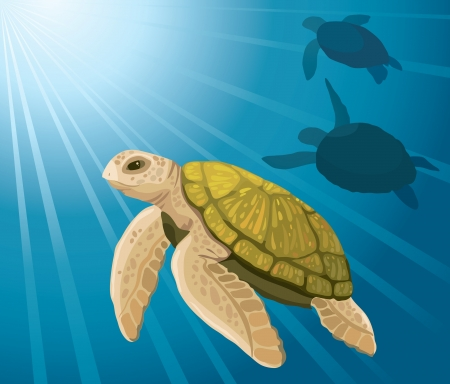 sea turtle: Cartoon yellow turtles swimming on a blue sea background Illustration
