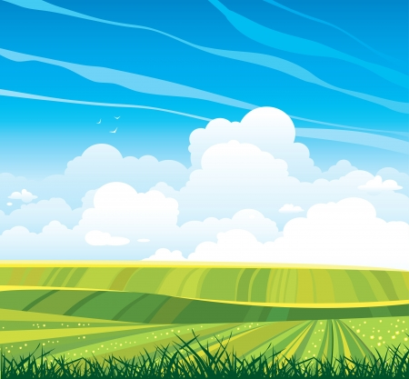horizon over land: Group of cumulus clouds on the horizon and green flowering field on a blue sky background  Summer landscape