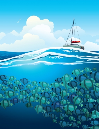school of fish: School of the fish swims under white yacht on a blue sea background.