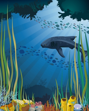 Gray whale shark swims over a coral reef in the blue sea  Underwater life  Vector