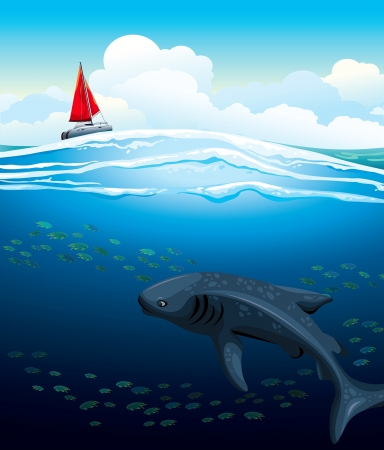 under water: Gray whale shark swims under white boat with red sails on a blue sea background