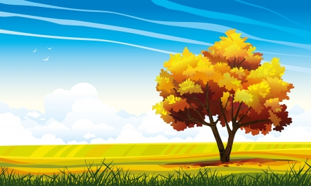 Yellow tree and green grass on a blue sky background with clouds autumn landscape Stock Vector - 19560730