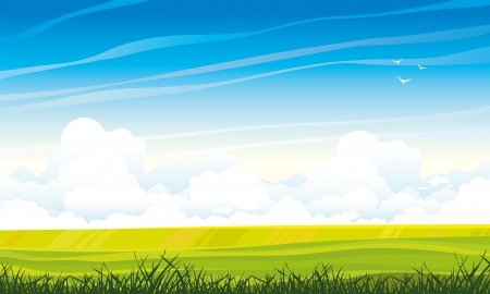 cartoon land: Summer landscape with green meadow and grass on a blue sky background with cumulus clouds