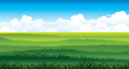 Natural summer landscape - field with green grass and group of white clouds on a blue sky background   Illustration
