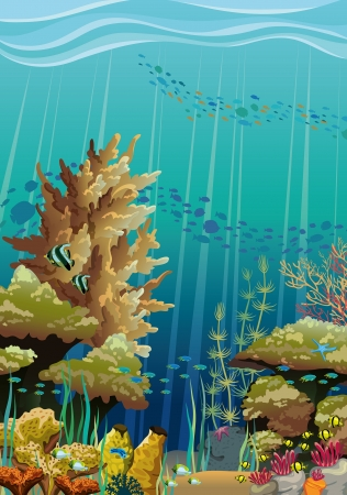 Nature vector seascape with underwater creatures and coral reef Vector